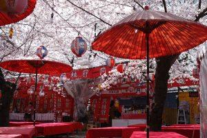 150406[京都_平野神社】