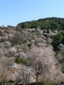 24_hanayagura-thumb-640x504-1534
