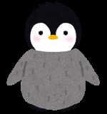 長崎ペンギン水族館の料金の割引方法は?クーポン情報やクチコミも!
