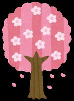 花見2019高照山の桜の見頃や開花はいつ?混雑状況に駐車場も!